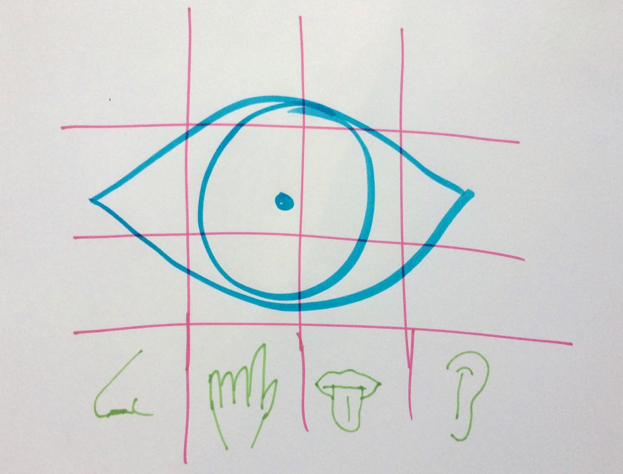 A drawing of a grid with small regions for a nose, a finger, a tongue and an ear, and a very large region for an eye